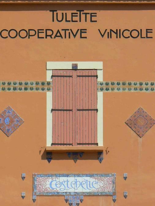 Visuel 2/3 : Cave coopérative