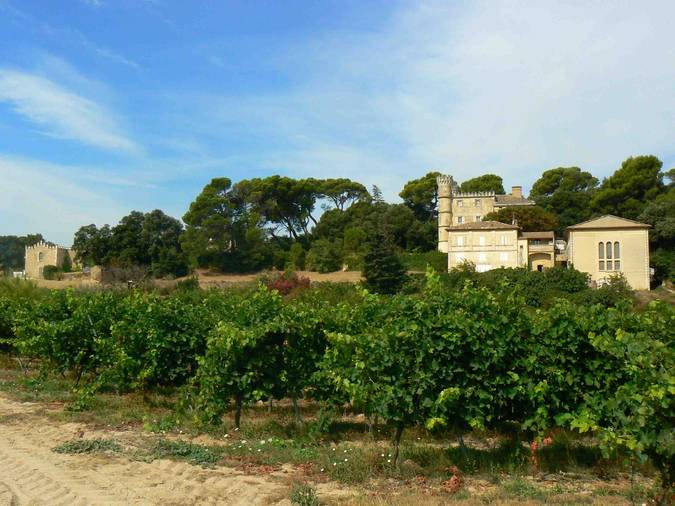 Visuel 2/2 : Château La Borie