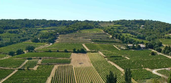 Visuel 1/2 : Coteaux et collines viticoles
