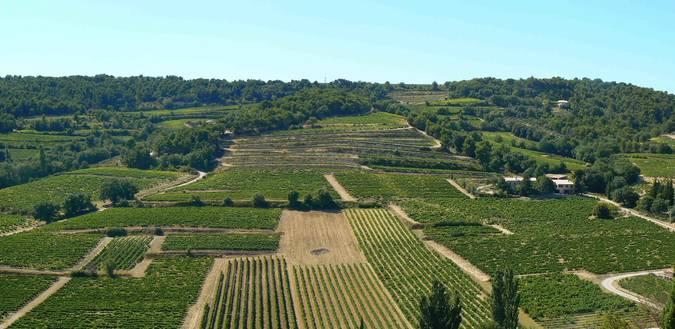 Visuel 1/2 : Coteaux et collines viticoles de Vinsobres