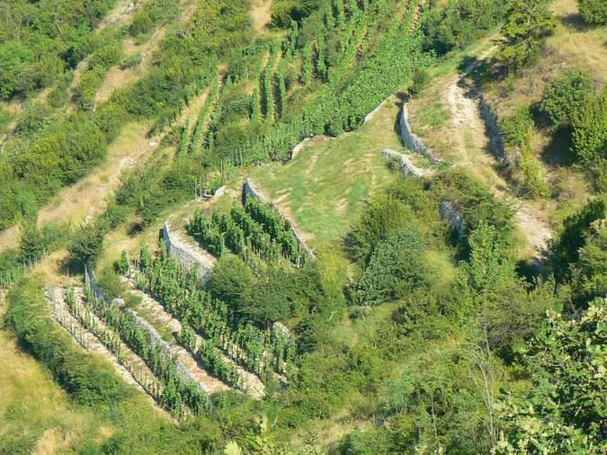 Visuel 1/2 : Murs de soutènement des coteaux de la Côte de Brézème