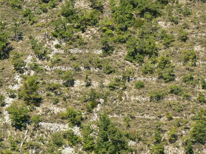 Visuel 3/3 : Terrasses de culture de Rochebrune