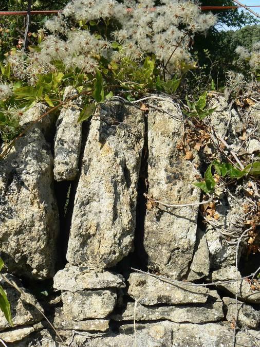Visuel 2/4 : Murs de clôture à Grignan