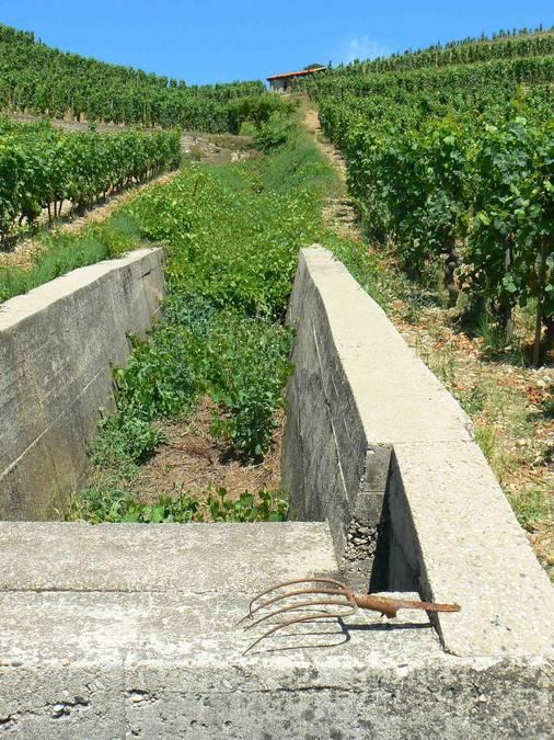 Visuel 4/4 : Canaux d'irrigation