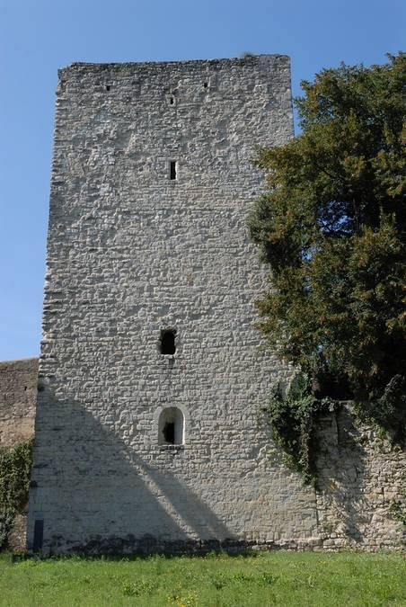 Visuel 3/4 : Château des Adhémar