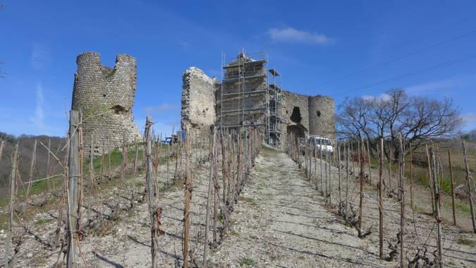 Visuel 1/3 : Château de Larnage