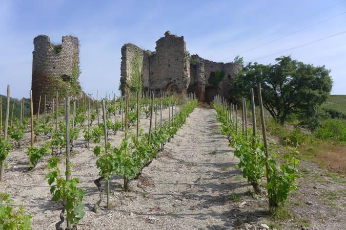 Visuel 2/3 : Château de Larnage