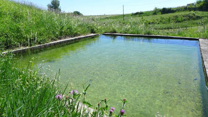 Visuel 1/2 : Bassin-réservoir