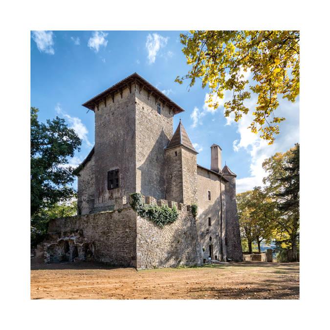 Château De Charmes à Charmes-sur-l'herbasse, Site Du