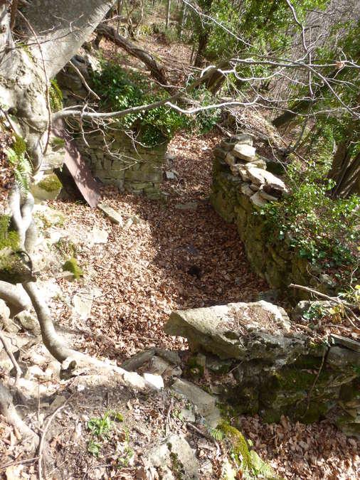 Visuel 1/1 : Randonnée à la découverte de cabane de charbonniers (JEP 2019)