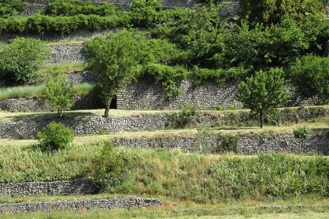 Visuel 1/2 : Terrasses en pierre sèche