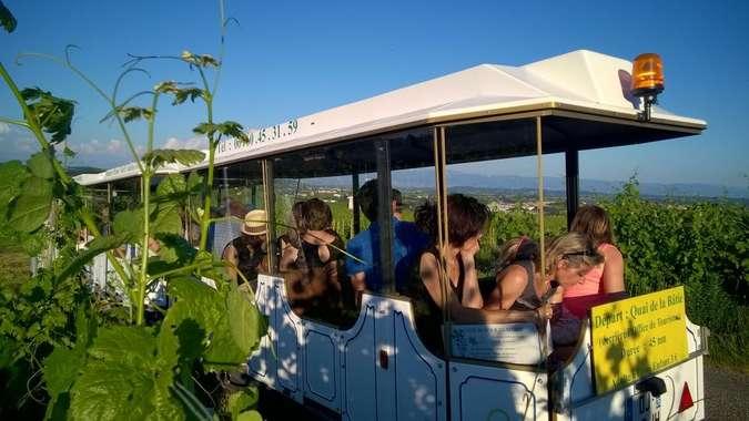 Visuel 1/1 : Du Petit Train des Vignes de l'Hermitage au sommelier - Fascinant week-end Vignobles & Découvertes