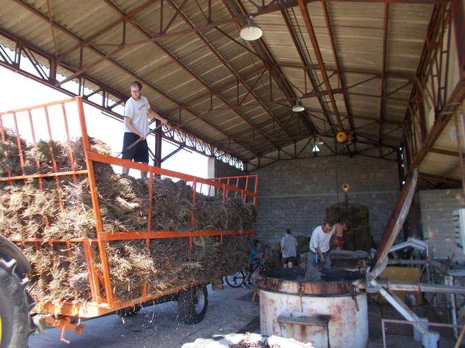 Visuel 2/4 : Distillerie pour l'essence de lavande