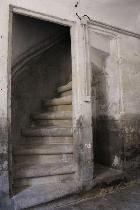 Visuel 1/5 : Tourelle d'escalier, voûtes et charpente (chapelle des Cordeliers)