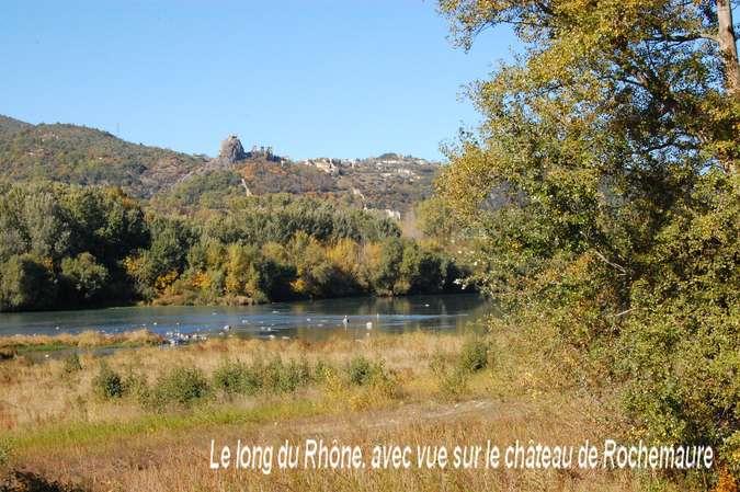Visuel 2/12 : Des quais d'Ancône aux îles du Rhône (à pied ou à VTT)