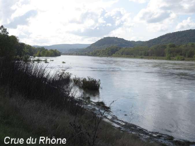 Visuel 6/12 : Des quais d'Ancône aux îles du Rhône (à pied ou à VTT)