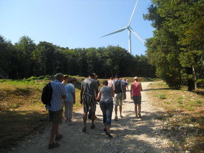 Visuel 1/1 : Viste du parc éolien de Marsanne : une visite industrielle...en forêt !