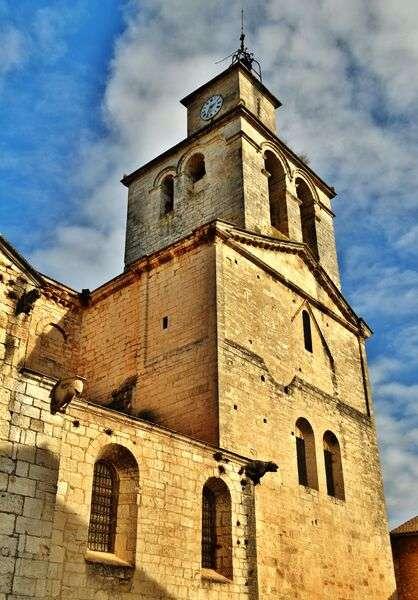 Visuel 1/1 : Visite guidée de la cathédrale