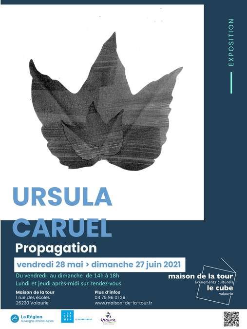 Visuel 1/1 : Exposition d'Ursula Caruel : PROPAGATION